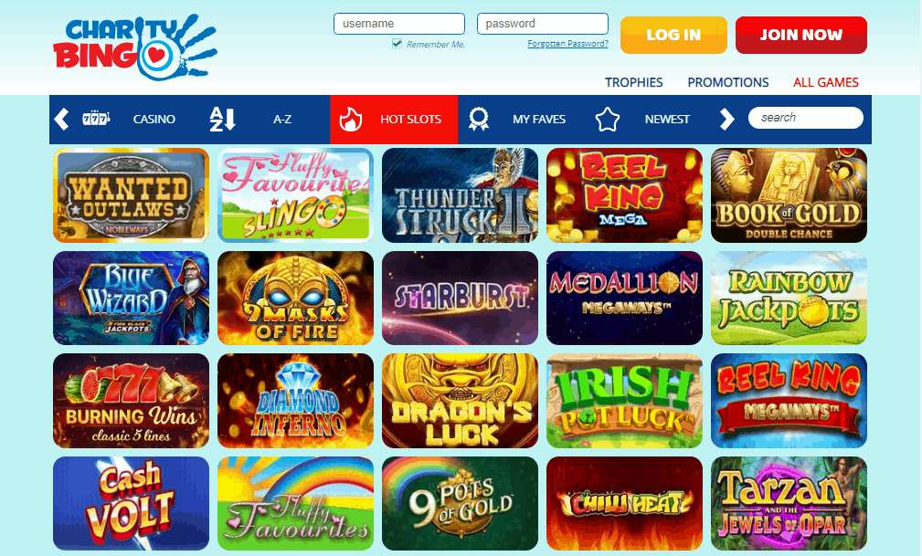 Charity Bingo games
