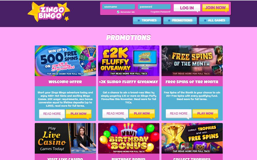 Zingo Bingo promotions